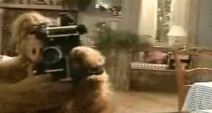 Theme Lyrics: Alf