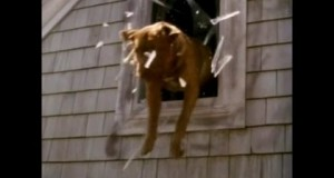 Tequila and Bonetti: Runt of the Litter - DVD-R Hell