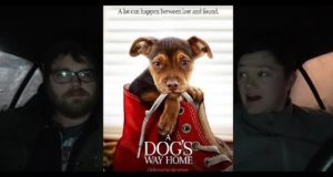 A Dog's Way Home - Midnight Screenings